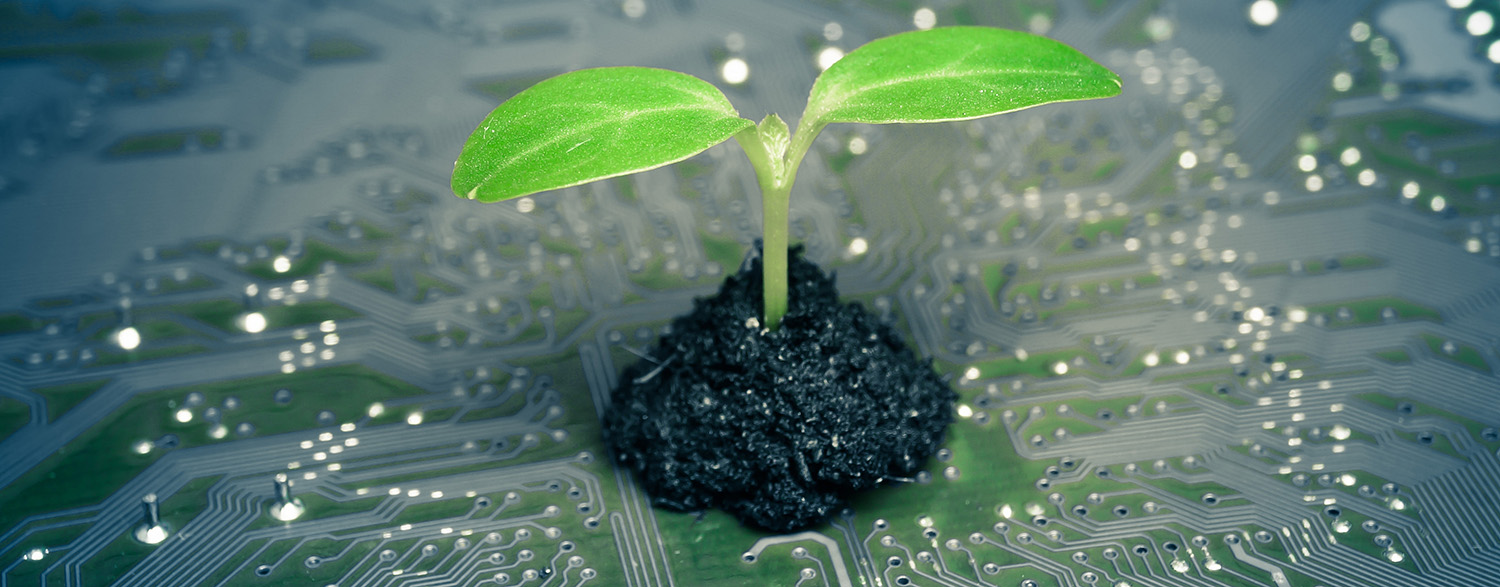 Environment, in computing