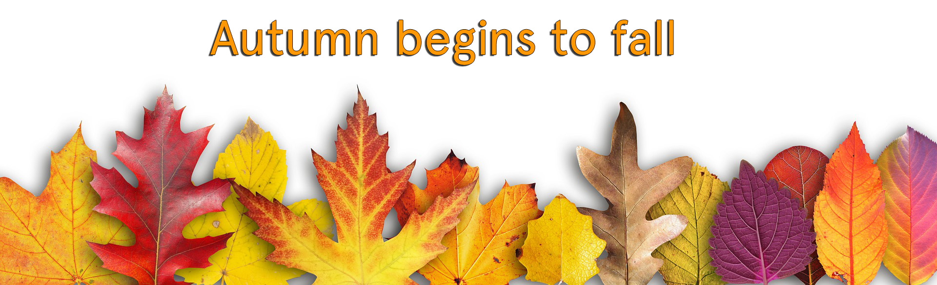 Autumn begins to fall